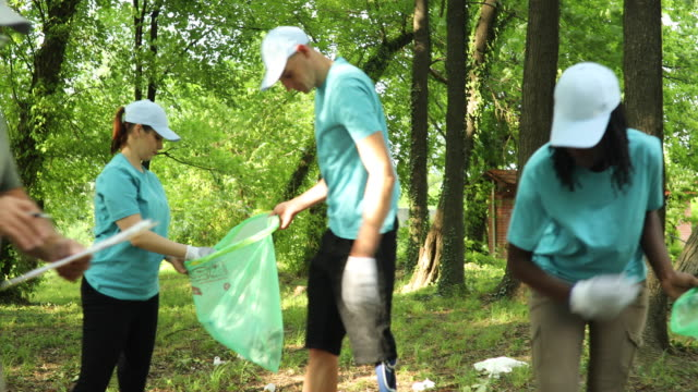 people cleaning in park - environmental cleanup stock videos and b-roll footage