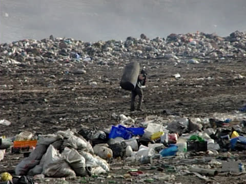 people collecting and recycle from garbage dump - toxic waste stock videos & royalty-free footage