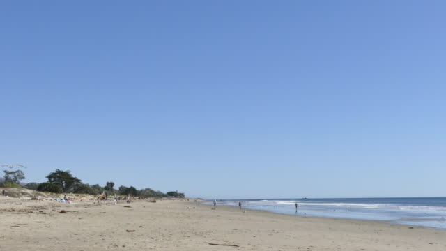 people couples children playing walking and swimming in the ocean at carpinteria state beach in southern santa barbara county northwest of ventura... - cabina del guardaspiaggia video stock e b–roll