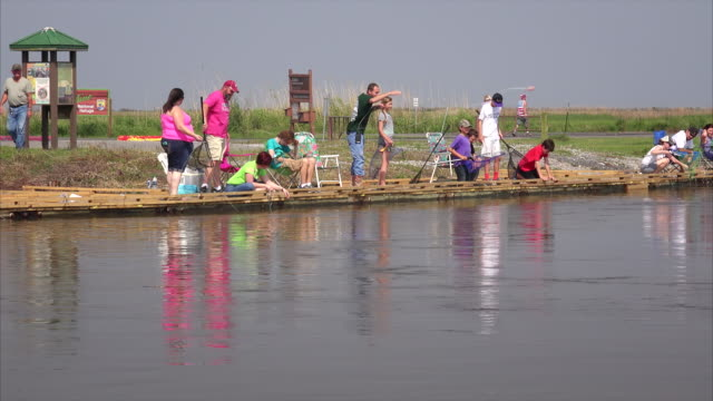 people crabbing from dock with string and chicken in marsh at sabine national wildlife refuge in louisiana - カニ捕り点の映像素材/bロール