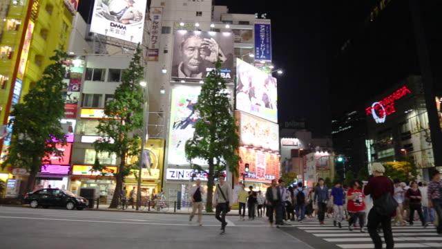 People crossing a crosswalk in Akihabara (Tokyo)