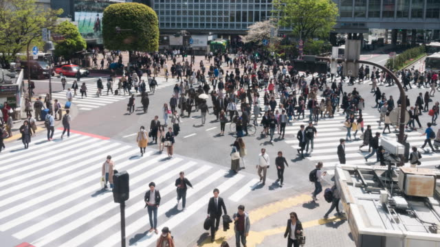 people crossing road in japan - super slow motion stock videos & royalty-free footage