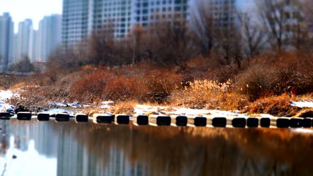 vídeos y material grabado en eventos de stock de people crossing stepping stone on river / south korea - cruzar