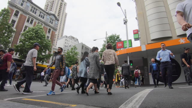people crossing the road at an intersection with traffic lights in auckland, new zealand - new zealand stock videos & royalty-free footage