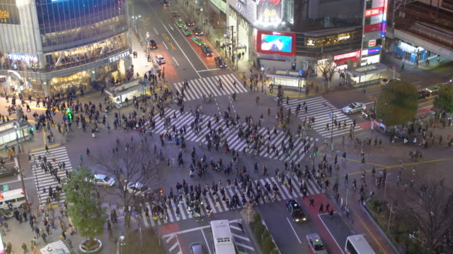 ws people crossing the street at night, tokyo - shibuya station stock videos and b-roll footage