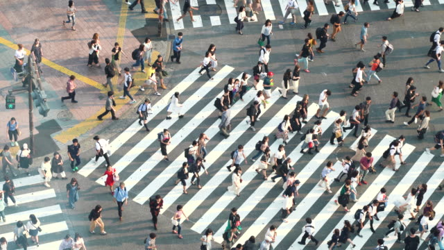 people crossing the street in rush hour - population explosion stock videos & royalty-free footage