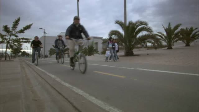 la ws people cycling and walking on street past palm trees / bogota, colombia - bogota stock videos & royalty-free footage