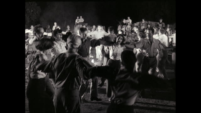 WS People dancing and enjoying near campfire at night / United States