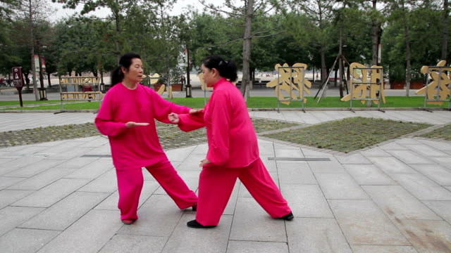 TS People doing movements in martial arts at park /Xi'an, Shaanxi, China