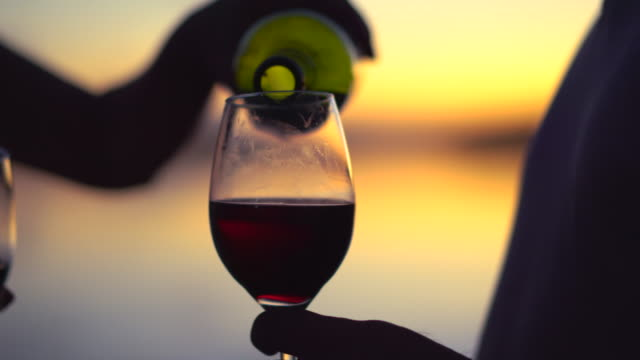 people drinking wine at sunset - bicchiere da vino video stock e b–roll