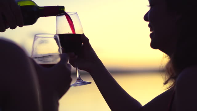 people drinking wine at sunset - wine glass stock videos & royalty-free footage
