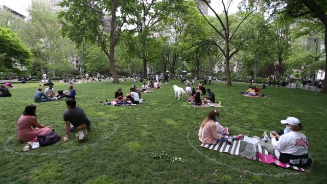 people eat lunch social distancing in white circles at madison square park in new york during the coronavirus pandemic on may 22 2020 - occupational safety and health stock videos & royalty-free footage