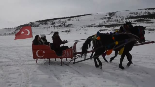 vídeos de stock, filmes e b-roll de people enjoy horsedrawn sleigh rides on the frozen lake cildir in ardahan province of northeastern turkey on february 17 2019 - animal de trabalho
