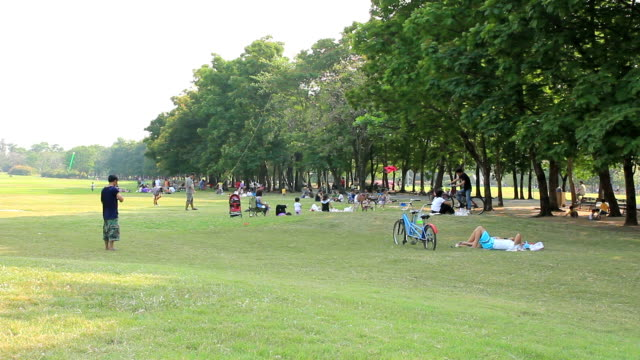 HD: people enjoy in republic park at evening