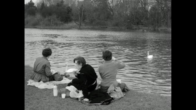 people enjoy spring sunshine by river thames; 1956 - small group of animals stock videos & royalty-free footage