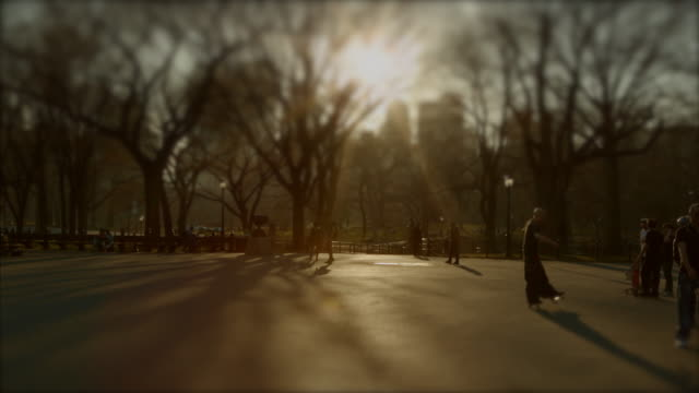 people enjoying central park at sunset nyc - central park manhattan stock videos and b-roll footage