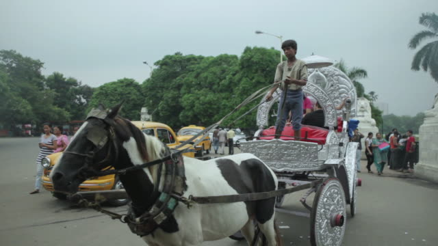 ms pan people enjoying in horse drawn carriages outside victoria memorial / kolkata, west bengal, india - victoria memorial kolkata stock videos and b-roll footage