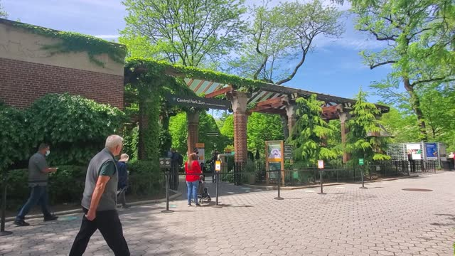 vídeos de stock e filmes b-roll de people enter the central park zoo in central park on may 6, 2021 in new york city. new york governor andrew cuomo announced pandemic restrictions to... - jardim zoológico de central park