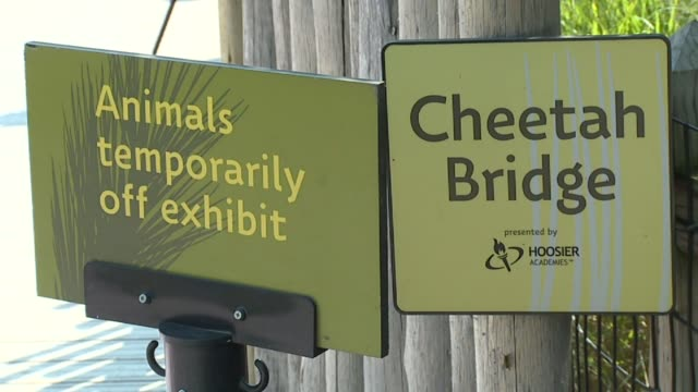 people entering the indianapolis zoo and signs for a closed cheetah exhibit after a cheetah escaped its enclosure and was tranquilized on september... - 鎮静薬点の映像素材/bロール