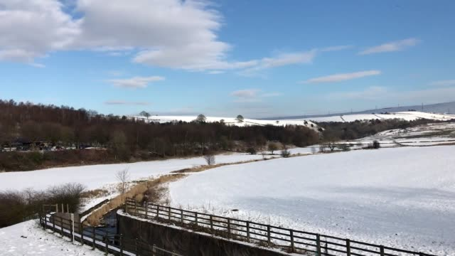 people feed the ducks and row on the lake at a snowy hollingworth country park rochdale - aquatisches lebewesen stock-videos und b-roll-filmmaterial