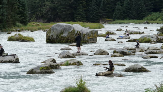 people fishing in haines alaska usa - zen like stock videos & royalty-free footage