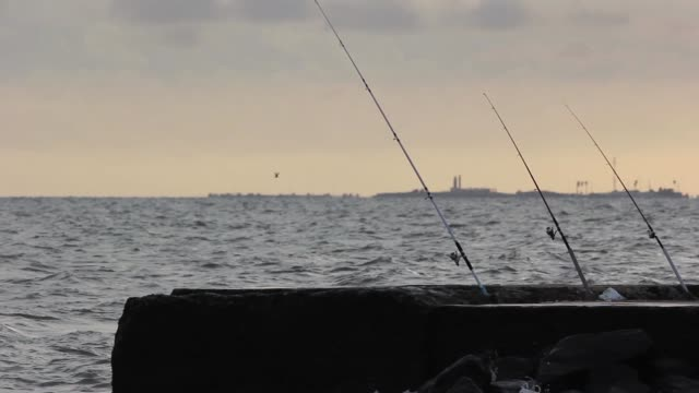 people fishing in montevideo, uruguay - montevideo stock-videos und b-roll-filmmaterial