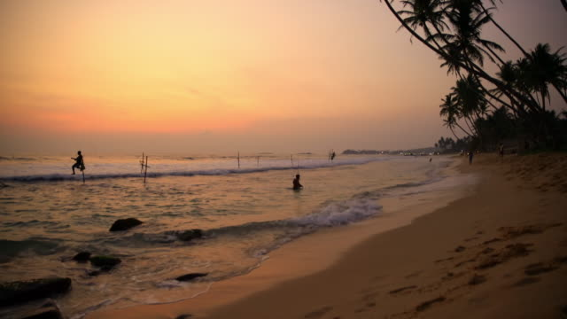 ms people fishing in ocean at sunset,sri lanka - fisherman stock videos & royalty-free footage