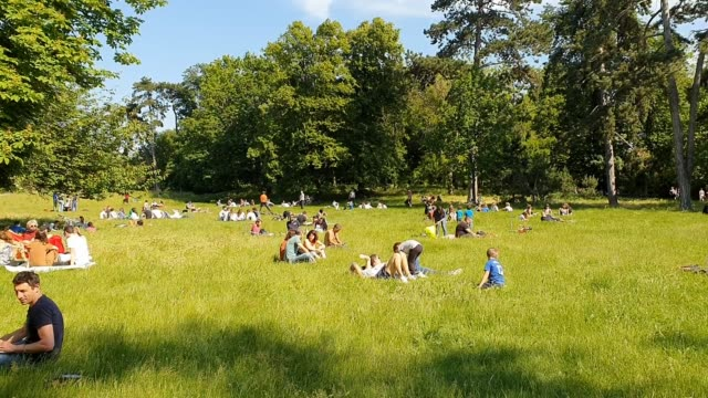 people gather on the grass in the bois de vincennes at the end of a sunny day as france is slowly reopening after almost two months of strict... - grass family stock videos & royalty-free footage