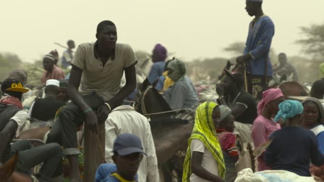people gathering at agricultural market, senegal - senegal stock videos & royalty-free footage