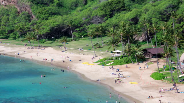 people going snorkeling in hanauma bay beach, oahu, hawaii, usa - bay of water stock videos & royalty-free footage