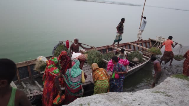 stockvideo's en b-roll-footage met people going to work in the cropland on the driedup river tista during summer in bangladesh they have lost their houses and land during flood in... - vluchteling ontheemden