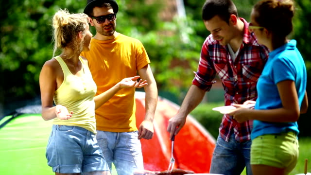 people having barbecue picnic. - picnic stock videos and b-roll footage