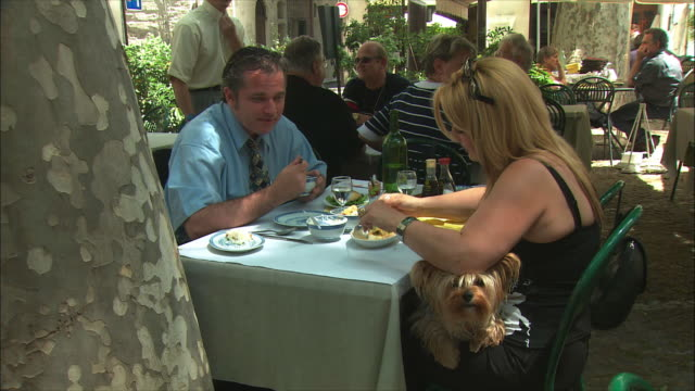 ms people having their meal in café / avignon, provence, france - pampered pets stock videos and b-roll footage