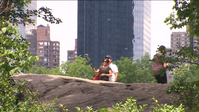 people hiking people scavenging people looking for ' hidden cash ' at central park on june 14 2014 in new york city - central park zoo stock-videos und b-roll-filmmaterial