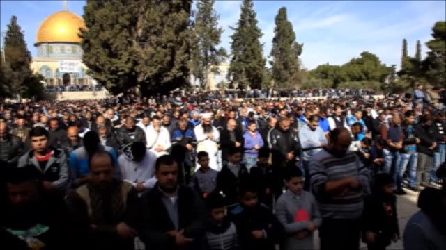 people hold banners of palestinians who have been killed by israeli forces and journalist muhammed elkayk who stages a hunger strike in israeli... - al aqsa mosque stock videos and b-roll footage