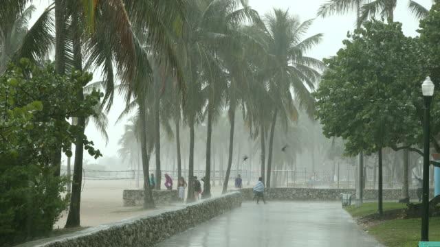 vídeos de stock, filmes e b-roll de as pessoas se apressar para sair de uma tempestade de chuva tropical - risco