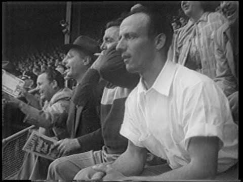 profile people in audience looking nervous at playoff game / polo grounds / nyc / newsreel - 1951年点の映像素材/bロール