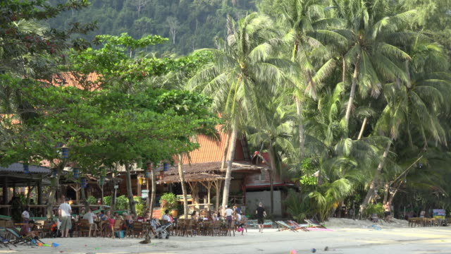 people in beach restaurant with palm trees - gulf of thailand stock videos & royalty-free footage