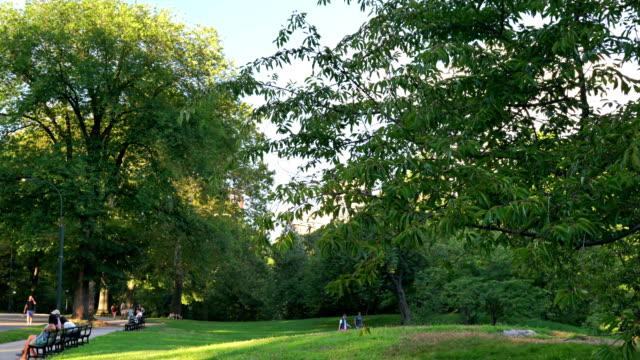 vídeos de stock, filmes e b-roll de people in central park and nature - atlântico central eua
