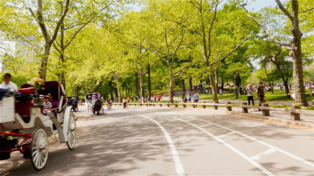 people in central park - rickshaw stock videos and b-roll footage
