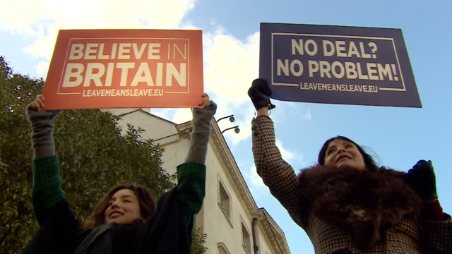 People in favour of a nodeal Brexit protesting in London