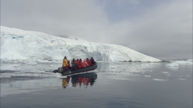ms, people in inflatable raft traveling along glacier, paradise bay, antarctica - antarctica people stock videos & royalty-free footage
