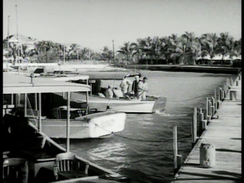 people in pleasure craft boat moving away from dock other boats at wooden dock people sitting on beach behind palm trees ha ws people wading in... - key west stock videos & royalty-free footage