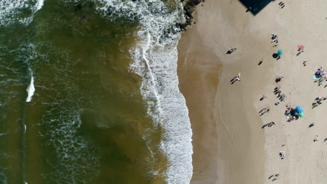people in punta del este beach, aerial view, drone point of view, uruguay - uruguay stock videos & royalty-free footage