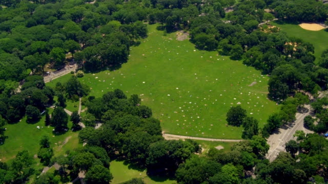 aerial people in sheep's meadow in central park - sheep meadow central park stock videos and b-roll footage