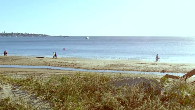 people in the beach in punta del este, uruguay - sedative stock videos & royalty-free footage