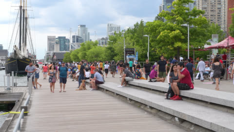 people in the city waterfront, toronto, canada - ontario canada stock videos & royalty-free footage