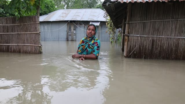 vidéos et rushes de people interviewed near their submerged houses during flood in the northern part of bangladesh heavy monsoon rains have unleashed landslides and... - inondation