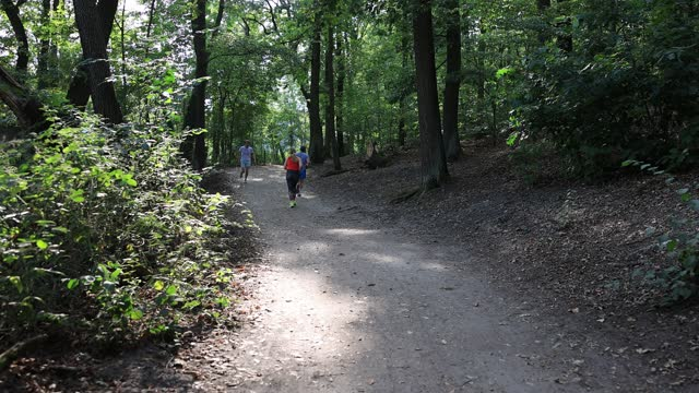 vídeos de stock e filmes b-roll de people jog past and enjoy the last summer days at the krumme lanke in the district zehlendorf during the coronavirus pandemic on september 16, 2020... - moving past