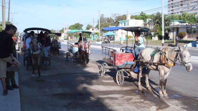 vídeos de stock e filmes b-roll de people line the street on horse-carts, which are an important mode of transport in sandino area, santa clara, cuba. - alto contraste